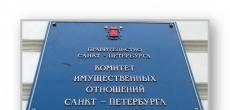 В Петербурге КИО переименуют обратно в КУГИ
