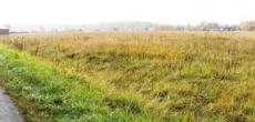 Из-за махинаций с участками прокуратура требует ревизии областных земель