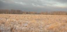 ВТБ избавляется от непрофильных активов – земли  в районе Рублевки