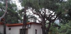 В Крыму на лето можно снять комнату дешевле, чем год назад, аренда на курортах Краснодарского края, напротив, подорожала