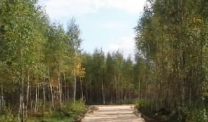 Фото коттеджного поселка Березовый от Застройщик неизвестен. Коттеджный поселок Berezovyy