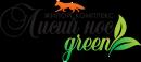 Логотип Вилларосси
