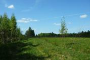 Фото КП Юрки от АТС Малиновка. Коттеджный поселок Yurki