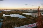 Рабочий проект для Судебного квартала в Петербурге разработает компания, причастная к тайнам по линии ФСБ