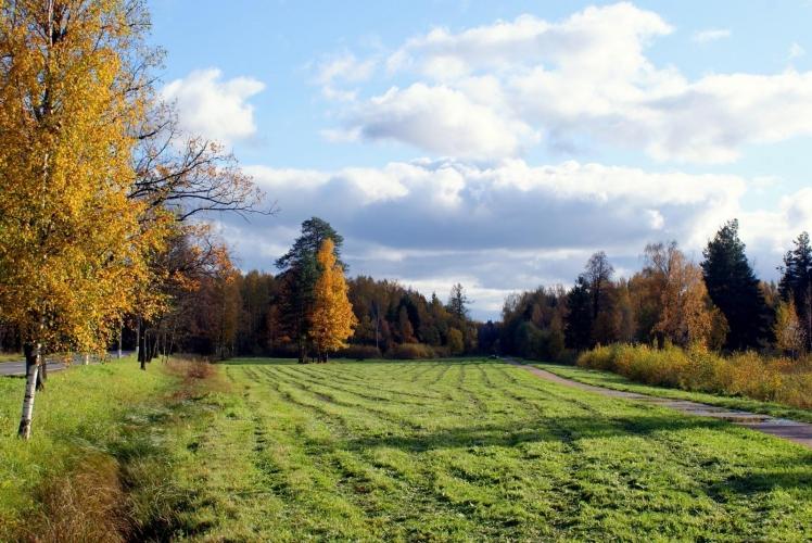 КГИОП выиграл кассацию в Арбитраже СЗФО у Steelmar Scandinavia в серии разбирательств вокруг застройки Баболовского парка