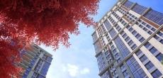 ГК «Пионер» объявляет о старте сезона осенних скидок в LIFE-Ботанический сад