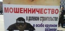 Выходные в Петербурге и Ленобласти прошли под знаком протестов дольщиков