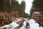 Продвигая идею деревянной России, Минпромторг предлагает субсидировать ставки на потребительские кредиты по аналогии с ипотечными
