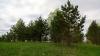 Рощинский хутор