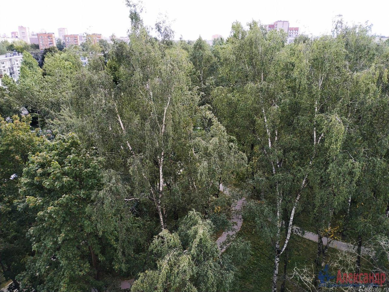 Продать Квартиры вторичка Санкт-Петербург,  Фрунзенский,  Международная, Славы пр.