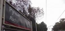 ДОМ.РФ продаст с торгов участок в Ручьях, где можно строить жилье
