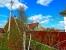 Продать Дачи, коттеджи, загородные дома Ленинградская область,  Всеволожский,  Дыбенко ул., Колос снт