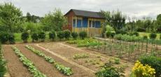 Садоводы и дачники Подмосковья освобождены от оплаты изменений ВРИ земли