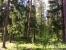 Продать Земельные участки, земля Ленинградская область,  Выборгский, Александровка д