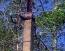 Продать Земельные участки, земля Ленинградская область,  Приозерский, Кротово п