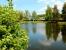 Фото коттеджного поселка Фонтебло от Спутник. Коттеджный поселок