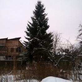 Продажа дома Петергоф г., Широкая ул. ,  д. 99