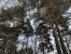 Фото коттеджного поселка Высокий стиль от Русь: Новые Территории. Коттеджный поселок Vysokiy stil