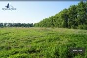 Фото КП Степановское от Красивая земля. Коттеджный поселок Stepanovskoe