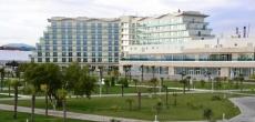 Вексельберг может передать один из отелей в Сочи государству за 3 млрд рублей