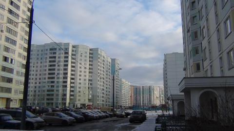 В 2015 году москвичи приватизировали на четверть меньше жилья, чем годом ранее