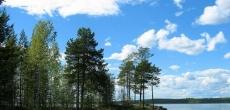 В рамках концепции градостроительного развития Петербургской агломерации КГА представил схему создания «зеленого пояса» вокруг города
