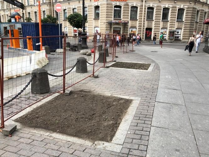 На площадь Восстания в Петербурге вернутся деревья