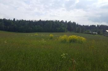 Фото коттеджного поселка Сосновские горки от 1-я Академия недвижимости. Коттеджный поселок Sosnovskie gorki