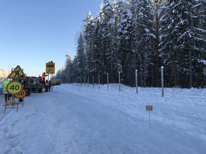 На федеральной трассе Р-21 «Кола» в Ленинградской области появился первый «электрический пастух»