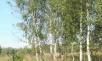 Фото КП Колонтаевские усадьбы от Застройщик неизвестен. Коттеджный поселок Kolontaevskie usadby