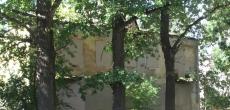 Фонд имущества Петербурга продаст дом под снос рядом с дворцово-парковым ансамблем «Ораниенбаум»