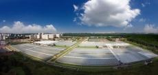 ГК «Абсолют» может построить жилые объекты на землях агрокомплекса «Московский»