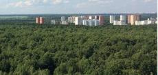 Минприроды предлагает разрешить строить в лесах объекты отдыха и туризма