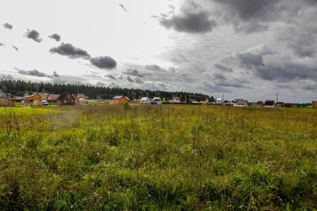 Фото коттеджного поселка Лесная привилегия от Северная долина. Коттеджный поселок