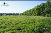 Фото КП Степановское 2 от Красивая земля. Коттеджный поселок Stepanovskoe 2