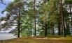 Фото КП Финский Бриз от Северная долина. Коттеджный поселок