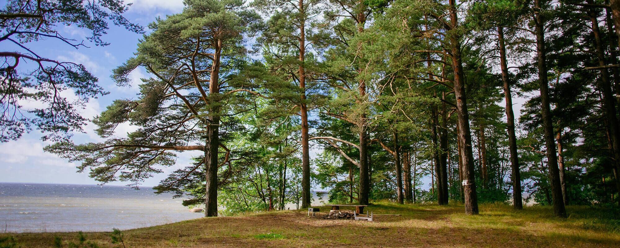 Фото коттеджного поселка Финский Бриз от Северная долина. Коттеджный поселок