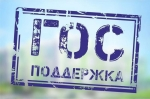 Медведев через три недели ждет новых предложений о помощи ипотечным заемщикам, столкнувшимся с финансовыми проблемами