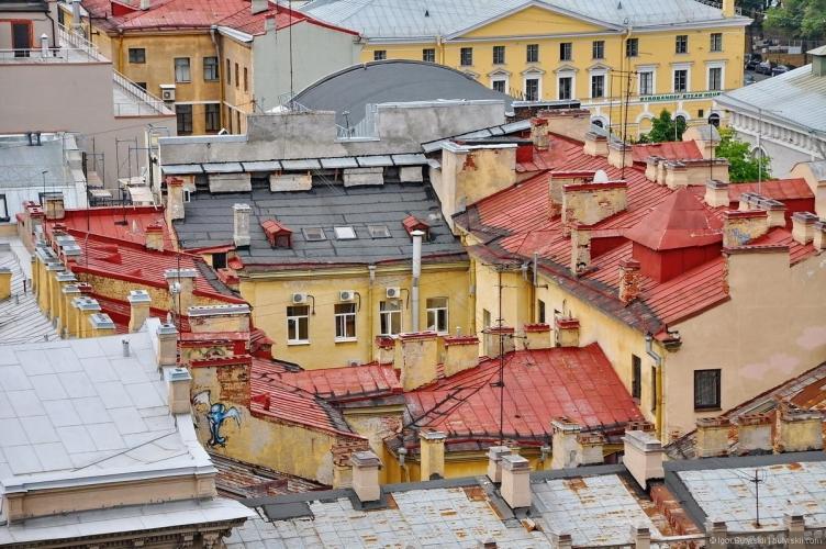 Депутаты ЗС Петербурга встали на защиту зеленых насаждений города против чиновников Смольного