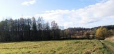 Ленобласть раздаст землю гектарами