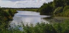 Власти Подмосковья приступили к созданию шести новых особо охраняемых природных территорий площадью более 8 тыс. га