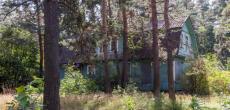 Петербург распродаст бывшие пионерские лагеря