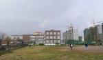 Градостроительный совет Ленобласти требует для Бугров зеленые зоны, социальную инфраструктуру и станцию метро